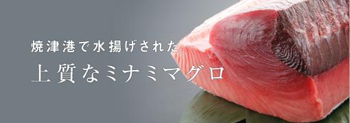 焼津港で水揚げされた上質なミナミマグロ